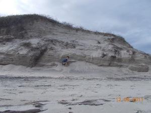 big and dune