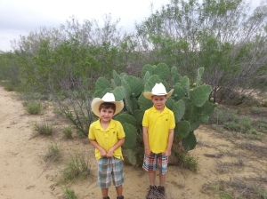 boys and catus 2