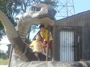 boys and snake