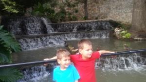 8.11.13 boys and ducks