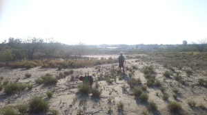 boys in desert