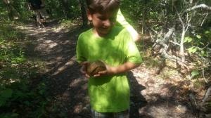 little turtel nature center