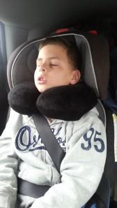 11.23.13 big sleeping in car