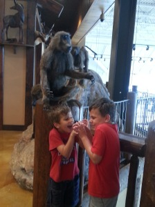 boys and monkey